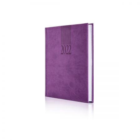 2022 Tucson Diary - AVAILABLE SOON