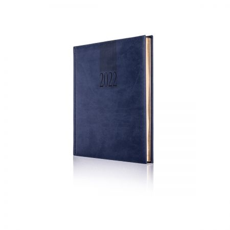 2022 Tucson Diary Cream Pages