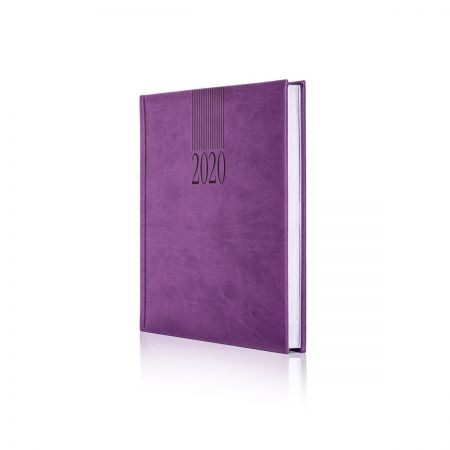 2020 Tucson Diary White Pages